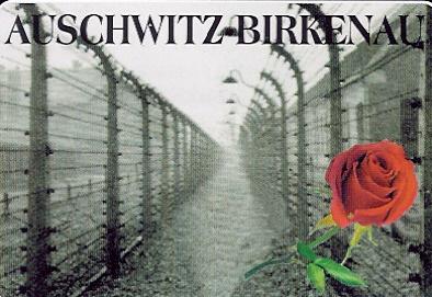 Amit ész föl nem foghat, abba belehal a lélek – Magyar sorsok Auschwitz-Birkenauban